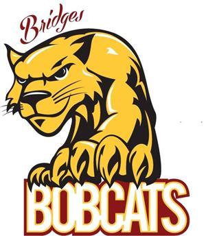 Image result for bridges bobcats